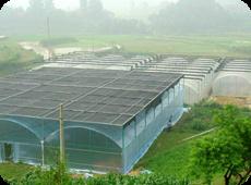 平价的建设温室大棚排行