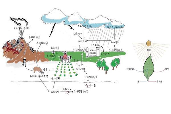 服务介绍生态农业旅游规划设计价格费用
