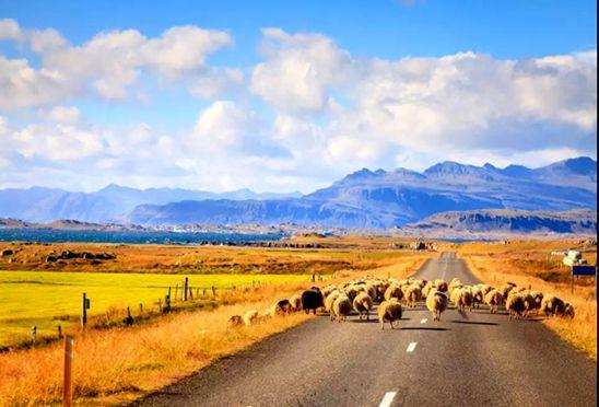 「冰岛旅游」哪家费用优惠有好处的吗信誉至上